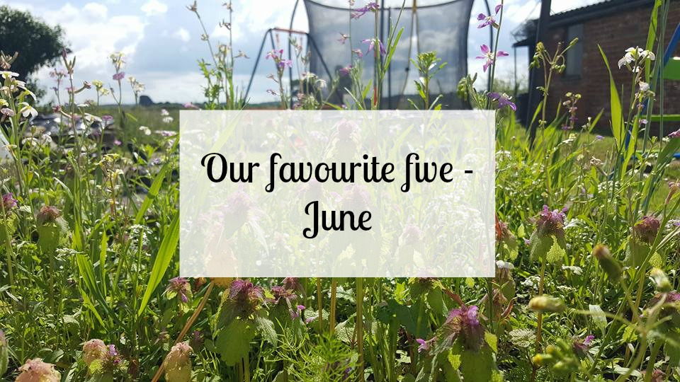 Our favourite five - June