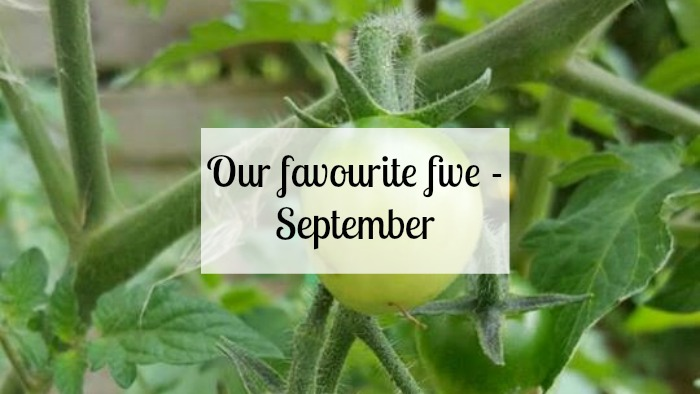 Our favourite five - September