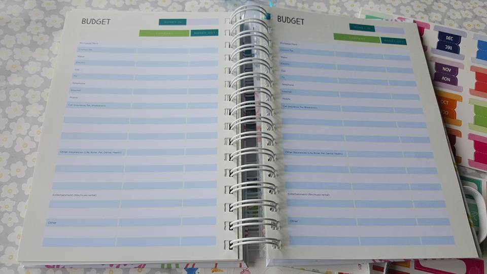 Unique Planners by Pirongs review - budget pages