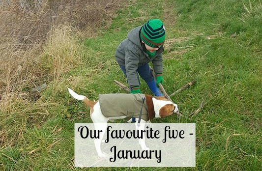 Our favourite five - January