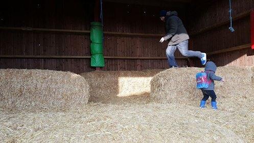 Pink Pig Farm - jumping hay bales