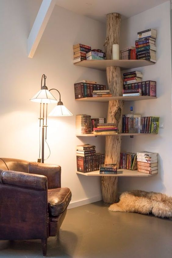 log book case, bookcase, book shelves