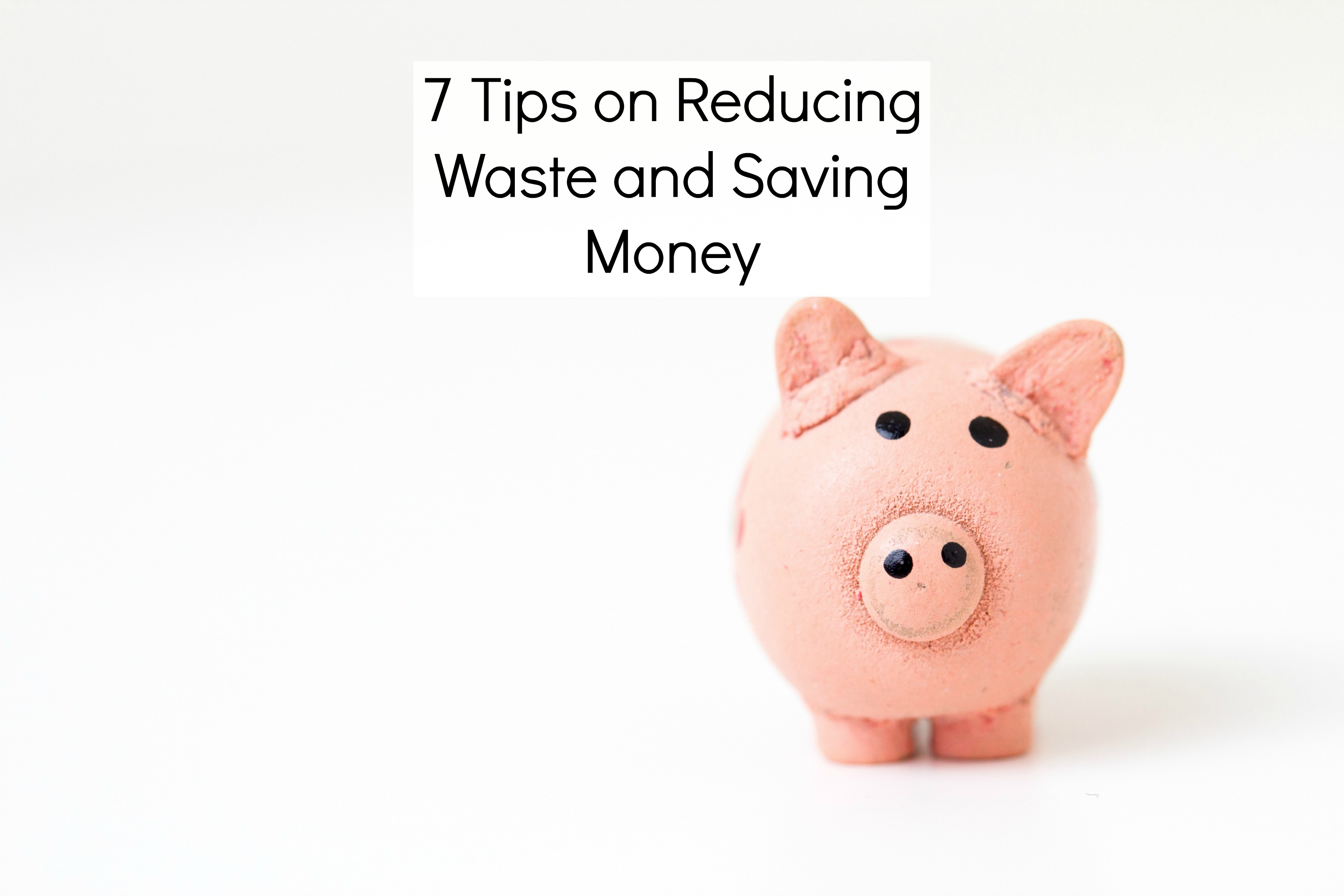 7 Tips on Reducing Waste and Saving Money