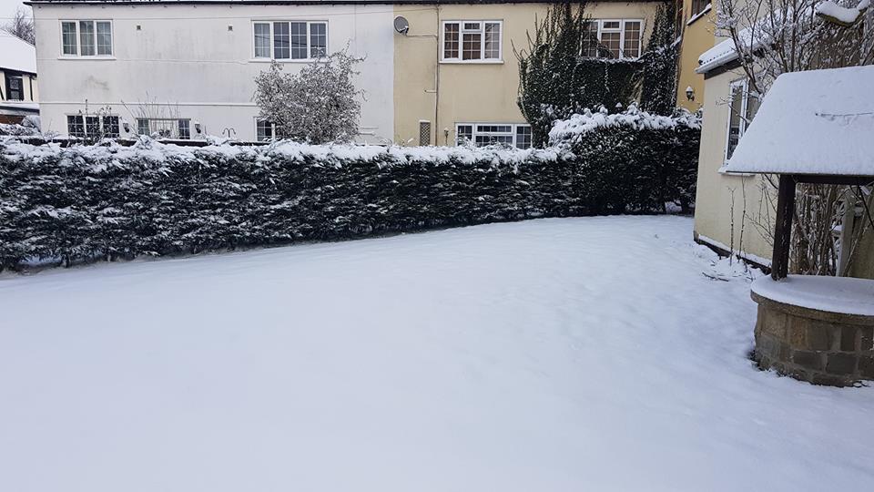 Snow, snow day