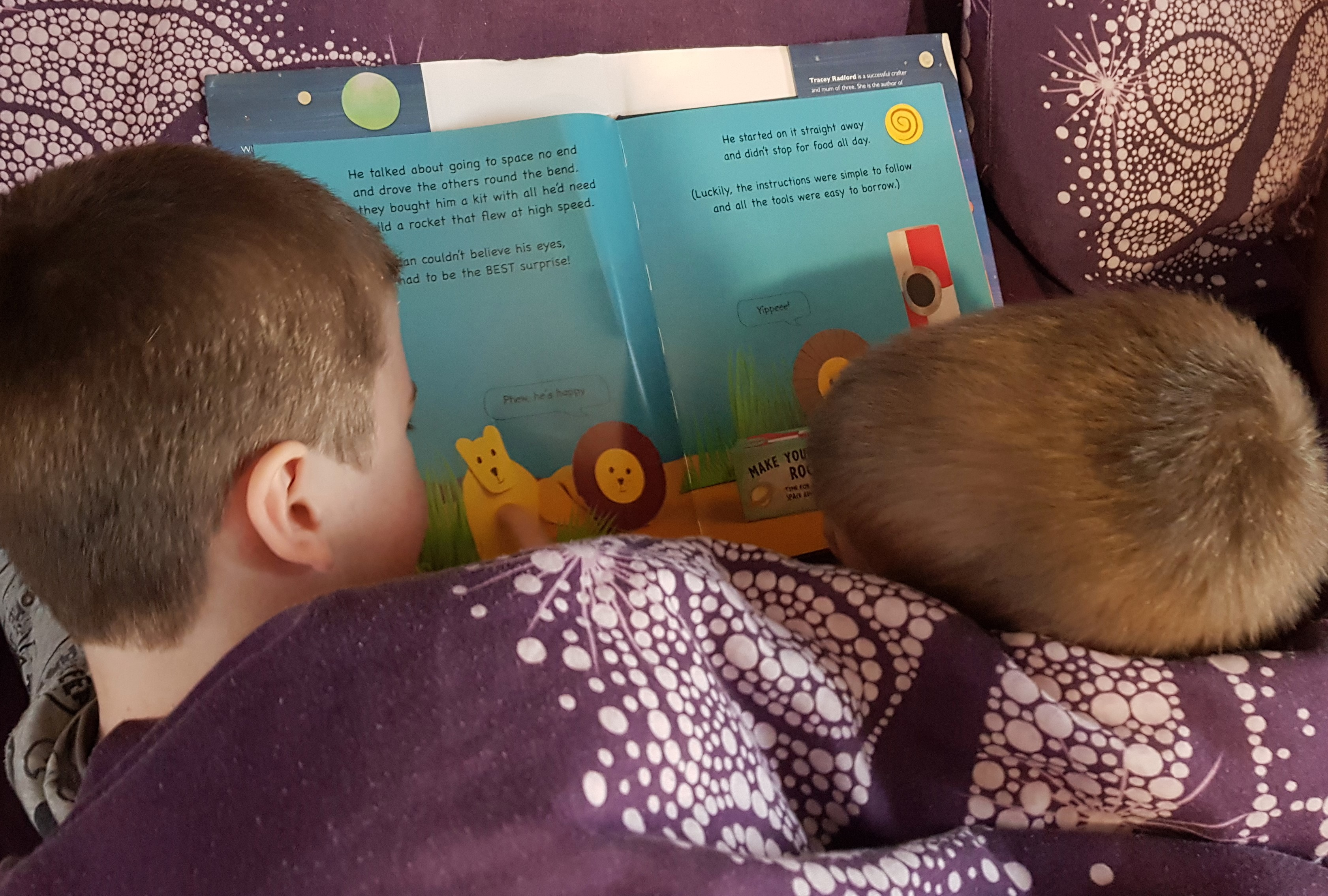 Reading Brian the Lion 2