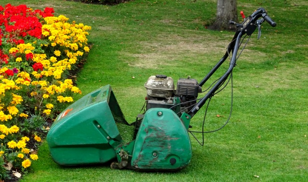 gardening-power-lawnmower