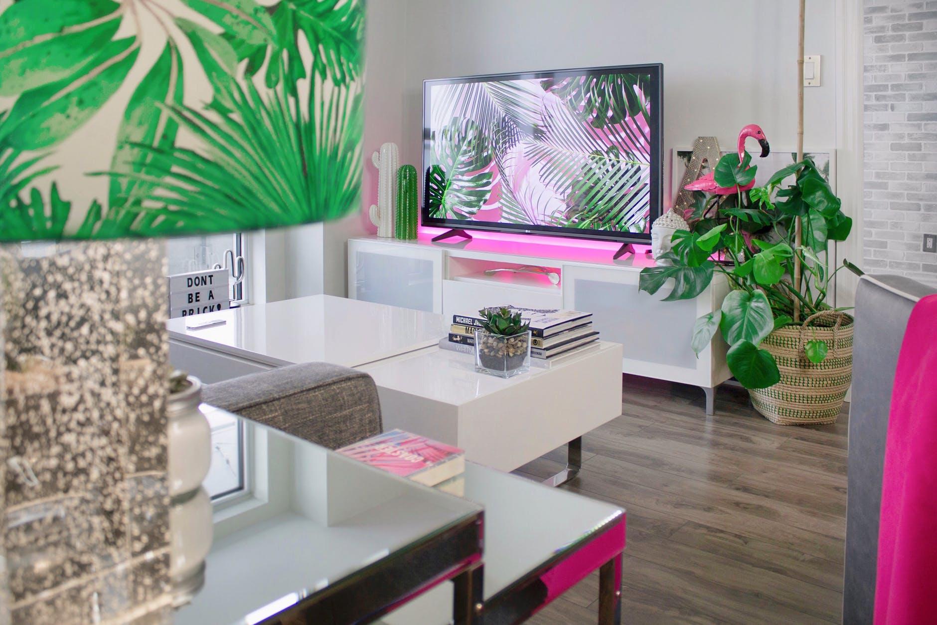 TV interior
