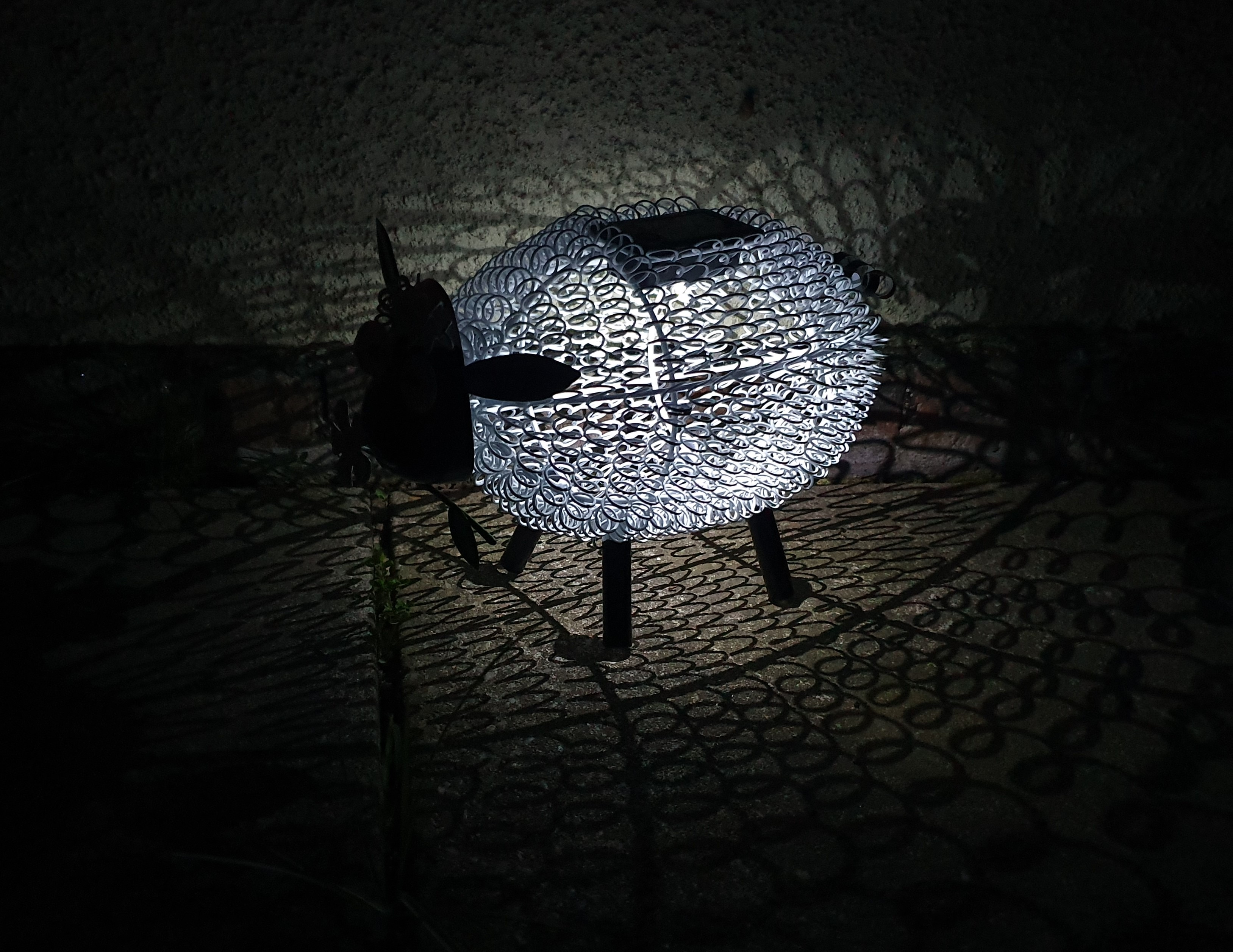 TJ Hughes solar sheep at night