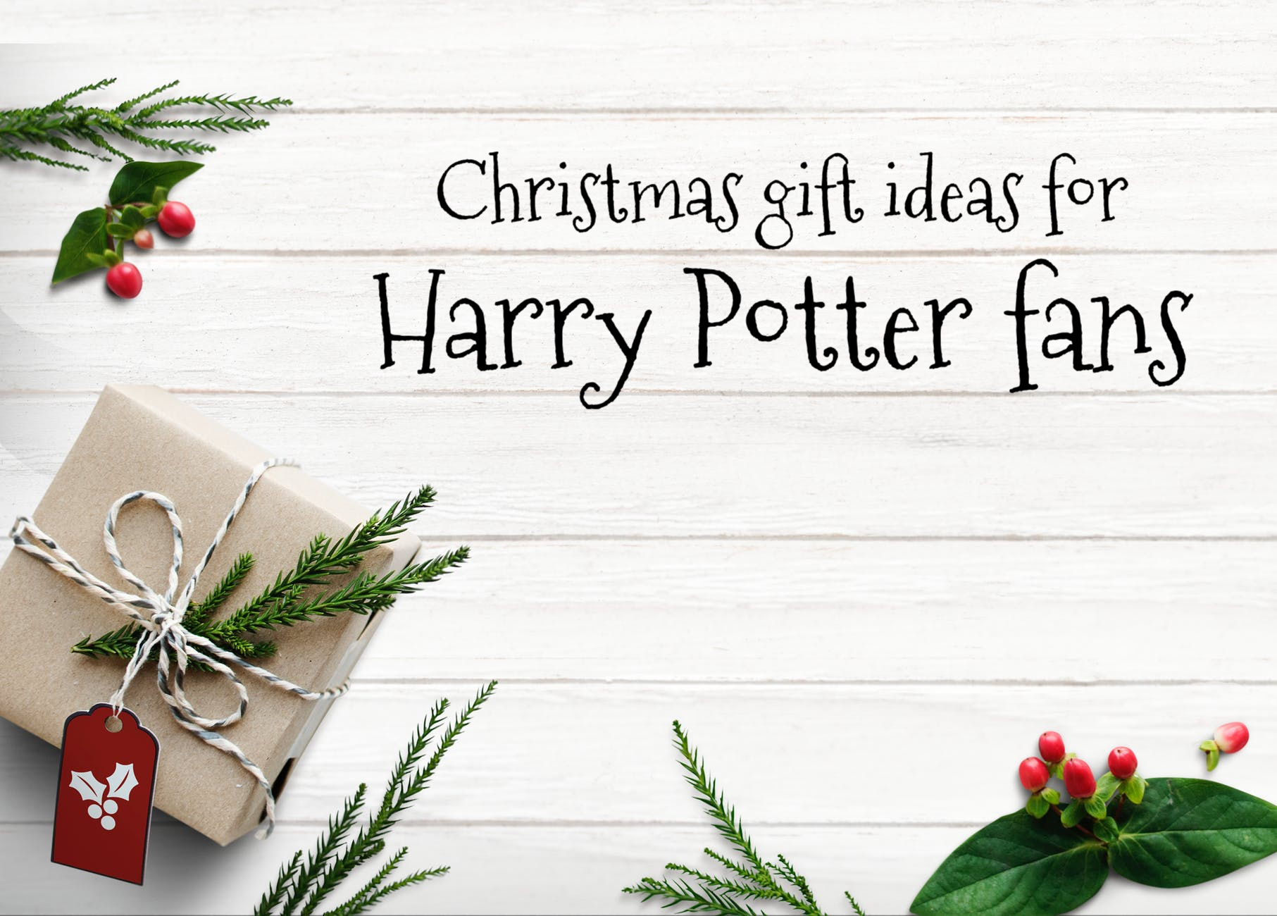 Christmas gift ideas for Harry Potter fans