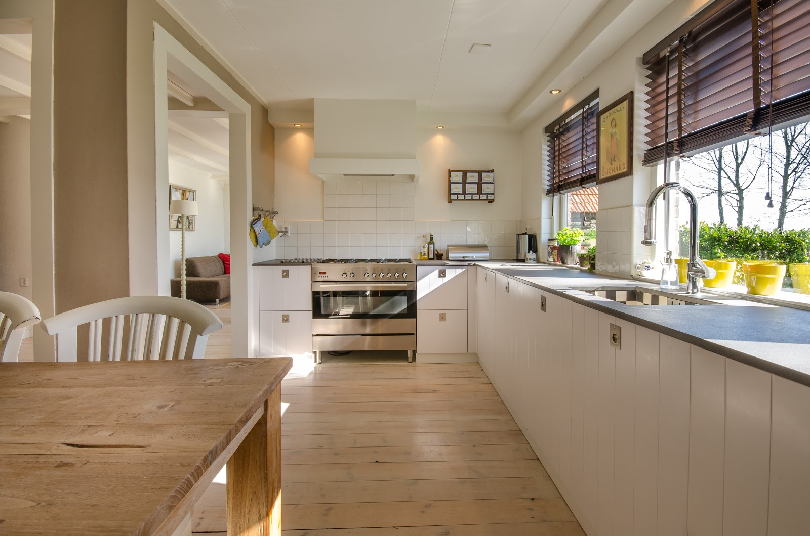 Easy Tips To Keep Your Home Clear Of Germs, kitchen