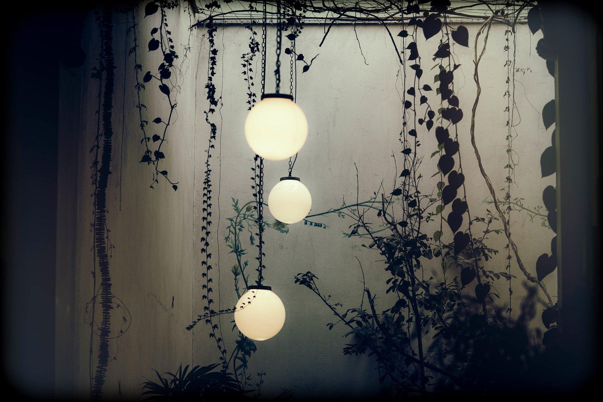 Hanging lights in garden
