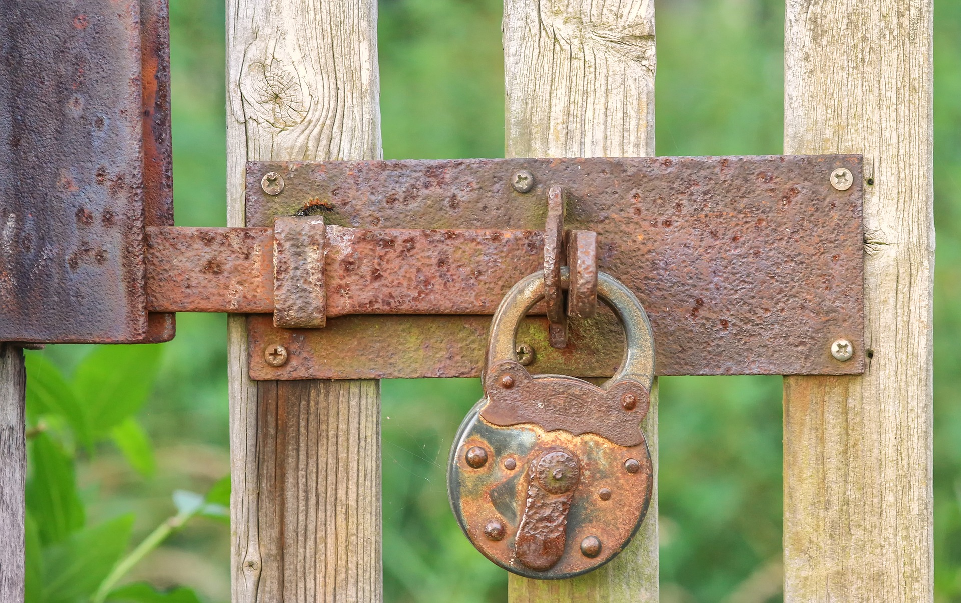 4 Important Security Tips For Your Garden