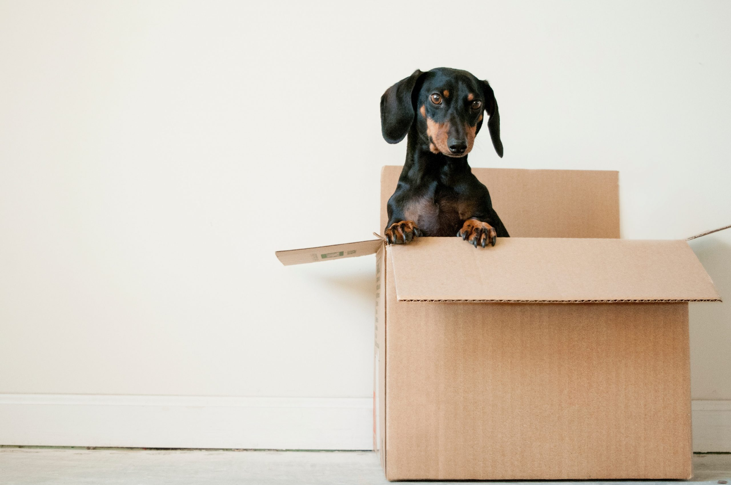 Four Tips For Moving House