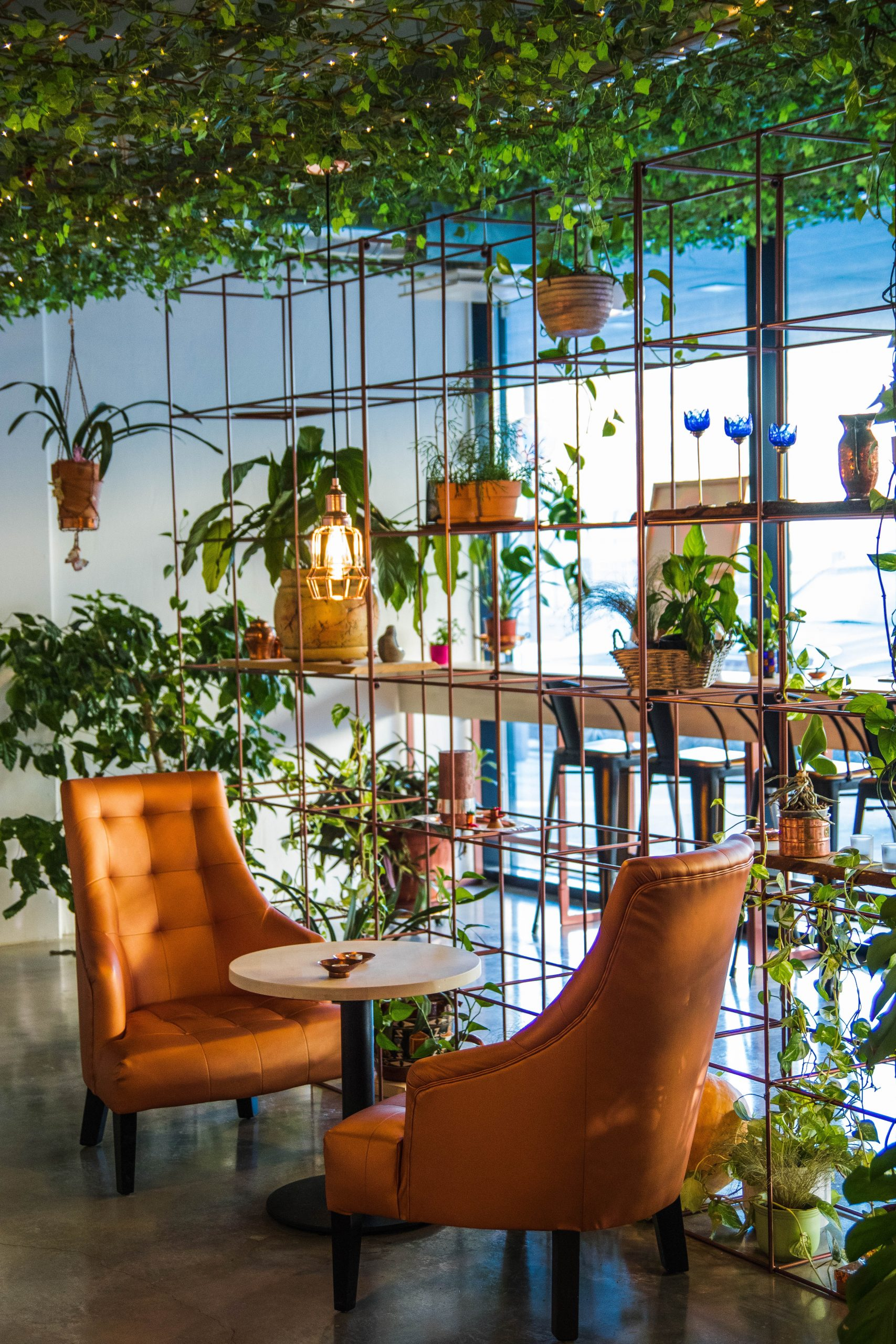 Sun room with plants on shelves, two chairs and a small table; What's In Your Dream Garden