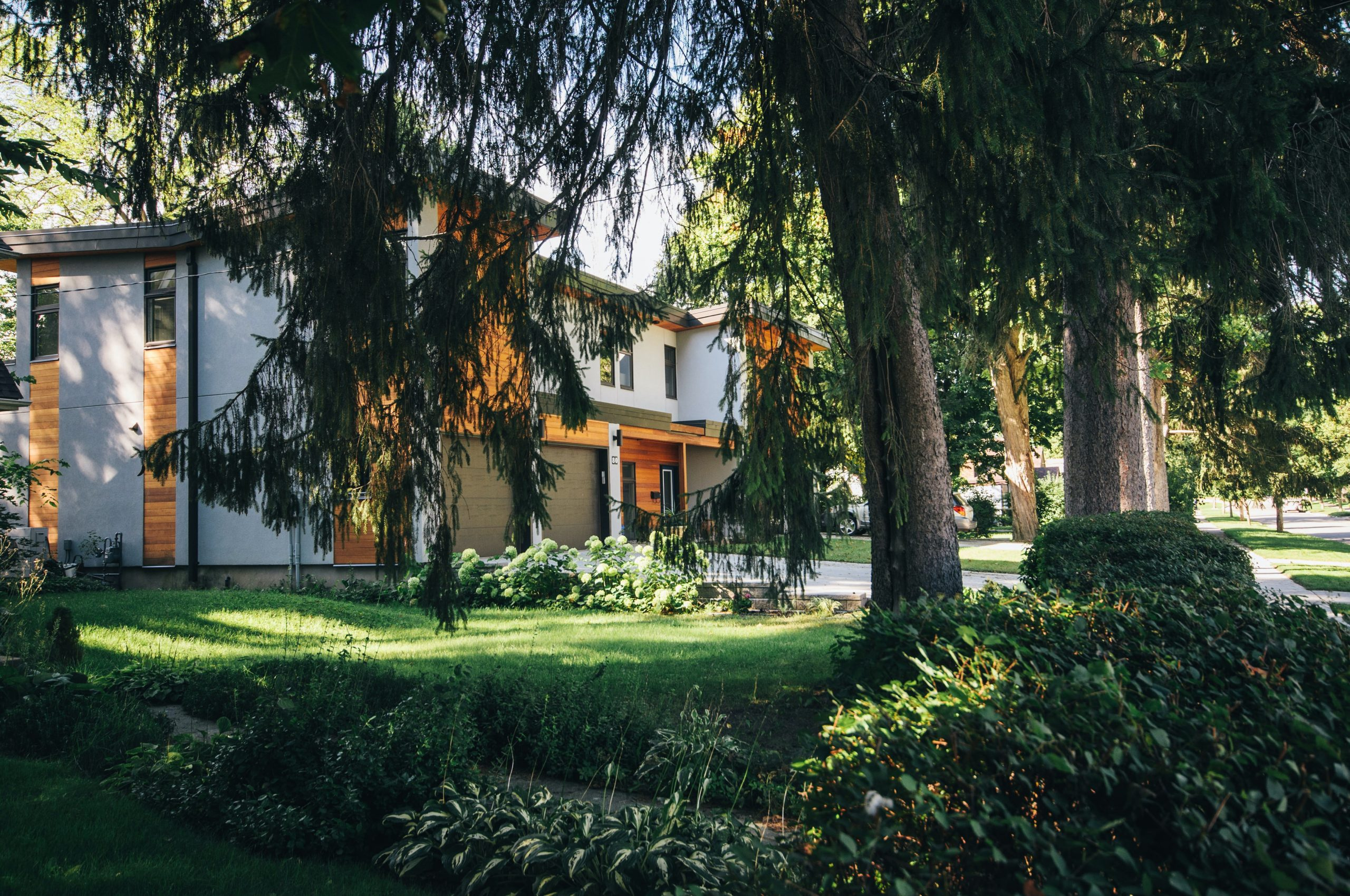 large house hidden behind a tree; How To Add Considerable Value To Your Home