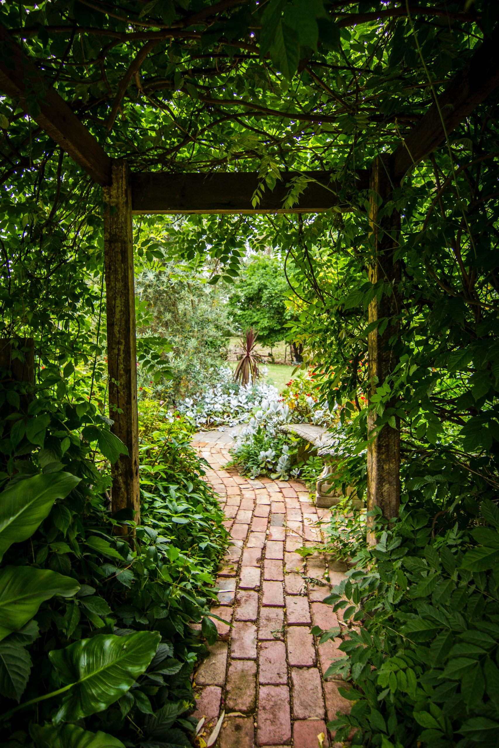 pathway through garden greenery; How To Make Your Yard More Functional