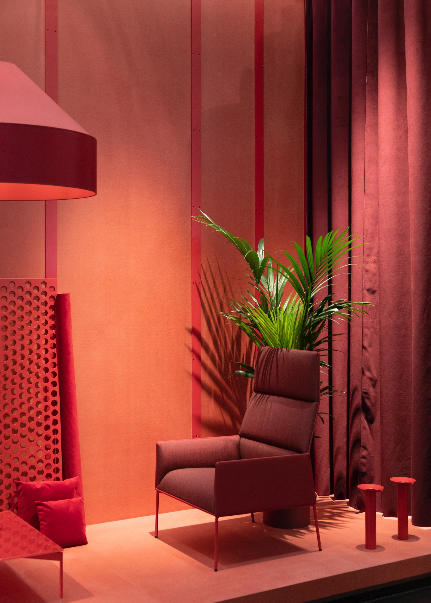 green plant in a room with red furnishings